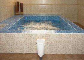 Hotel Chinar Hisarya